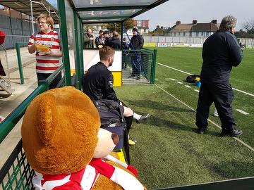 Kingstonian Ted on the bench at Haringey