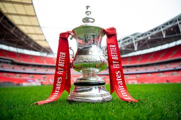 The Emirates FA Cup on the pitch at Wembley Stadium